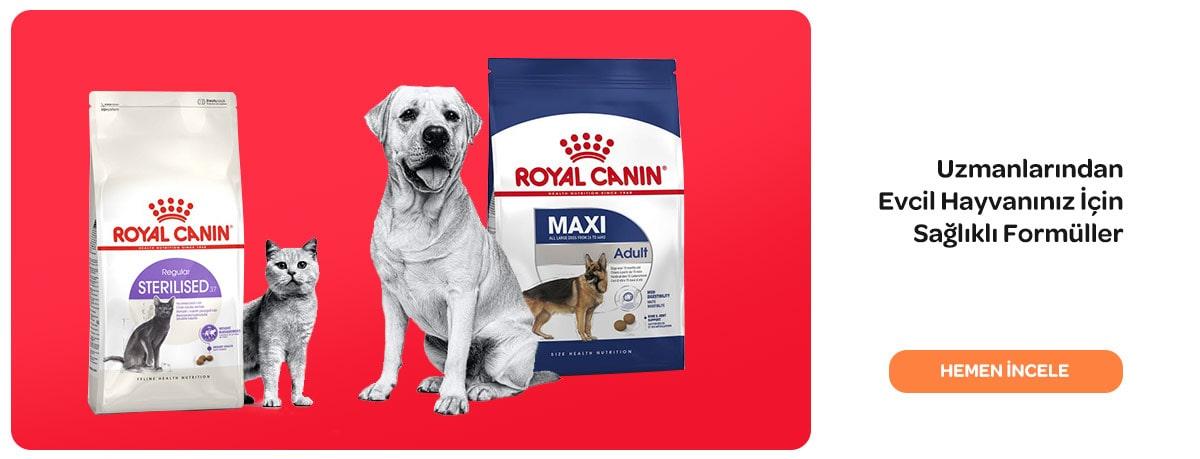 https://www.markamama.com.tr/Data/EditorFiles/yeniarayuz/24-02-2021-Royal-canin-kutu-min.jpg