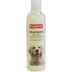 Beaphar - Beaphar Parlak Tüyler İçin Köpek Şampuanı 250 ML