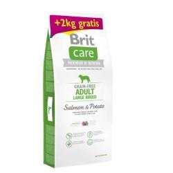 Brit Care - Brit Care Tahılsız Somonlu Büyük Irk Köpek Maması 14 KG