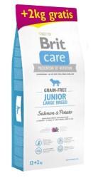 Brit Care - Brit Care Tahılsız Somonlu Büyük Irk Yavru Köpek Maması 14 KG