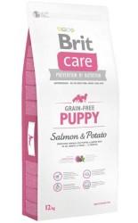 Brit Care - Brit Care Yavru Köpekler İçin Tahılsız Somonlu Köpek Maması 12 KG