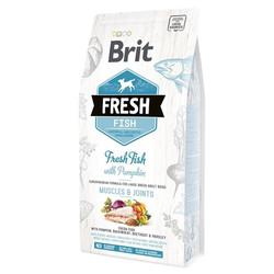 Brit Care - Brit Fresh Balıklı ve Balkabaklı Köpek Maması 2.5 KG