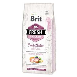 Brit Care - Brit Fresh Tavuklu Patatesli Yavru Köpek Maması 12 KG
