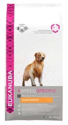 Eukanuba - Eukanuba Golden Retriever Yetişkin Köpek Maması 12 KG