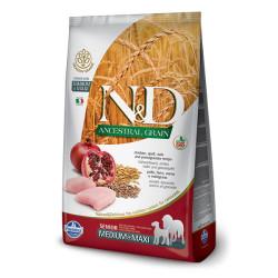 Farmina N&D - ND Düşük Tahıllı Büyük Irk Yaşlı Köpek Maması 12 KG