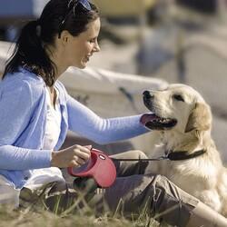 Flexi New Classic İp Otomatik Köpek Tasması 5M - M - Thumbnail