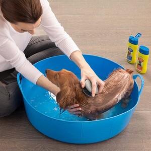 Furminator Kedi Ve Köpek Banyo Fırçası Şampuan Hazneli - Thumbnail
