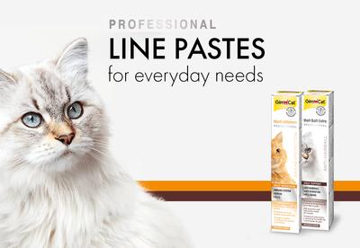 Gimcat Kediler İçin Multi-Vitamin Macunu 100 GR