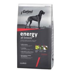 Golosi - Golosi Aktif Köpeklere Özel Köpek Maması 12 KG