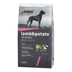 Golosi - Golosi Kuzulu ve Patatesli Tahılsız Köpek Maması 12 KG