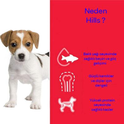 Hills Kuzu Etli Yavru Köpek Maması 14 KG
