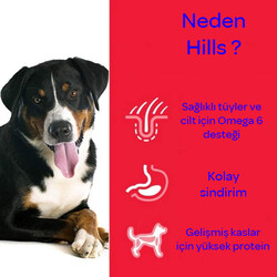 Hills Orta Irk Yaşlı Köpek Maması 14 KG - Thumbnail