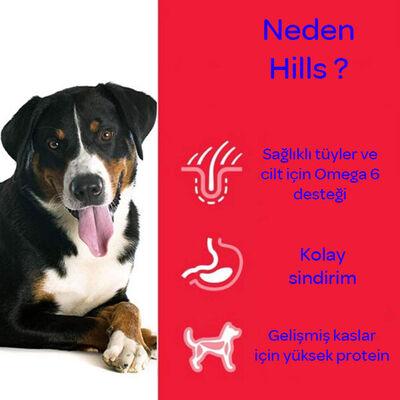 Hills Science Plan Kuzu Etli Köpek Maması 12+2 KG