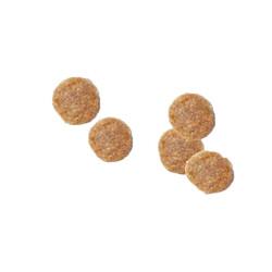 Hills Tavuklu Kısırlaştırılmış Kedi Maması 15 KG - Thumbnail