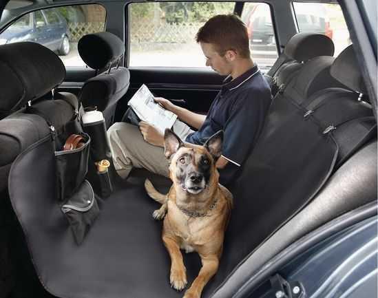 LionPet Köpekler İçin Araç İçi Arka Koltuk Koruma Örtüsü