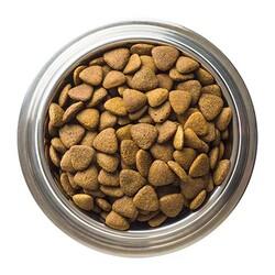 Luis Biftekli Köpek Maması 15 KG - Thumbnail