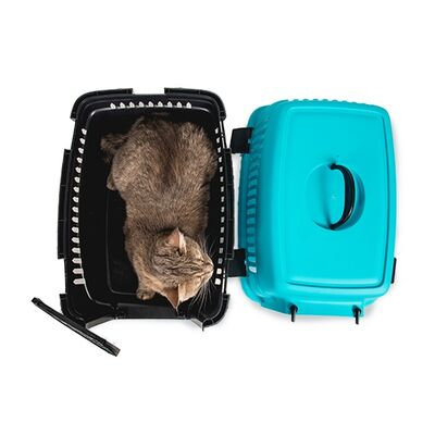 Markamama Kedi ve Köpek Taşıma Çantası