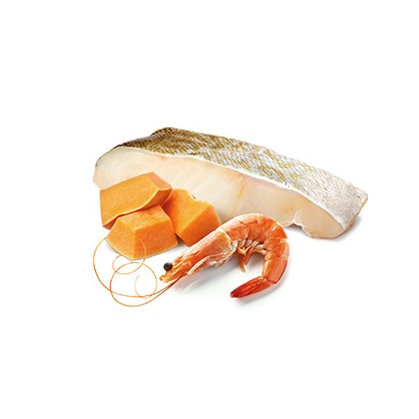 ND Tahılsız Ocean Bal Kabaklı Balık ve Karidesli Yavru Kedi Konservesi 80 GR