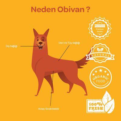 Obivan Naturel Kemik Köpek Ödülü 35 GR 10 CM 3 Lü