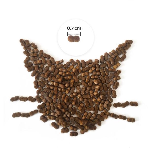 Obivan Selection Kuzu Etli Yavru Kedi Maması 1 KG x 6 Adet