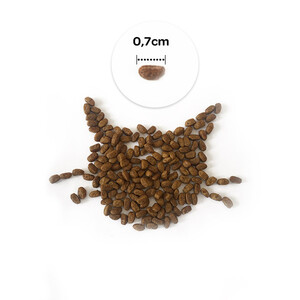 Obivan Low Grain Ocean Kısırlaştırılmış Kedi Maması 1 KG - Thumbnail