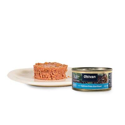 Obivan Tahılsız Somon Balıklı Ezme Kısırlaştırılmış Kedi Yaş Maması 80 GR