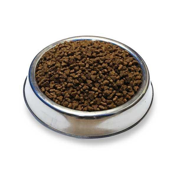 Obivan Tavuklu & Kızılcıklı Yavru Kedi Maması 10 KG
