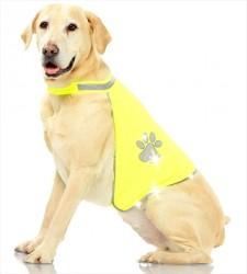 Pawise - Pawise Safety Vest Reflektörlü Köpek Yeleği Small