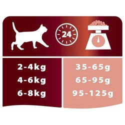 Pro Plan Somonlu Pirinçli Kedi Maması 3 KG - Thumbnail