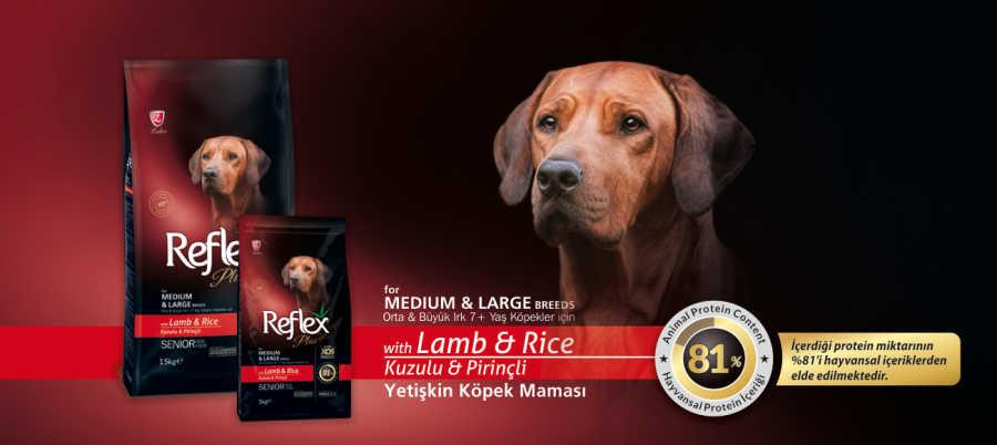 Reflex Plus Kuzu Etli Yaşlı Köpek Maması 15 KG
