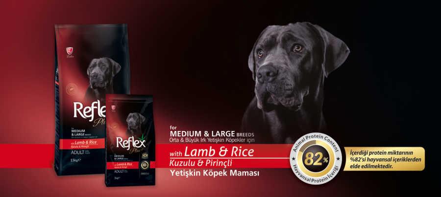 Reflex Plus Kuzu Etli Büyük Irk Köpek Maması 15 KG