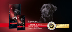 Reflex Plus Kuzu Etli Büyük Irk Köpek Maması 15 KG - Thumbnail