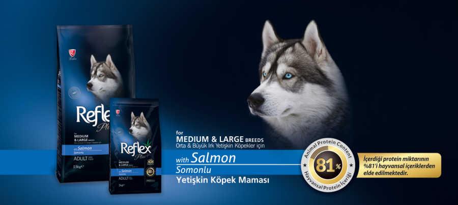 Reflex Plus Somon Balıklı Köpek Maması 15 KG