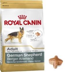 Royal Canin - Royal Canin German Shepard Köpek Maması 12 KG