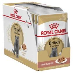 Royal Canin - Royal Canin British Shorthair Yaş Kedi Maması 85 GR * 12 ADET