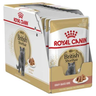 Royal Canin British Shorthair Yaş Kedi Maması 85 GR * 12 ADET