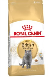 Royal Canin - Royal Canin British Shorthair Kedi Maması 10 KG