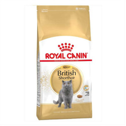 Royal Canin - Royal Canin British Shorthair Kedi Maması 2 KG