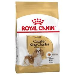 Royal Canin - Royal Canin Cavalier King Charles Köpek Maması 3 KG