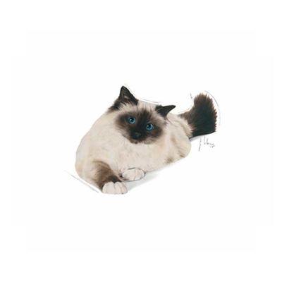 Royal Canin Hairball Kedi Maması 2 KG