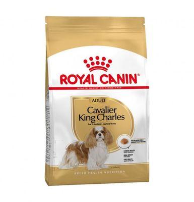 Royal Canin King Charles Köpek Maması 1,5 KG