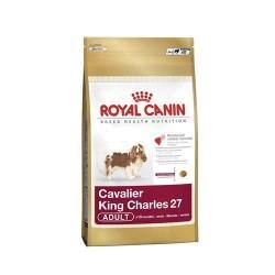 Royal Canin - Royal Canin King Charles Köpek Maması 3 KG