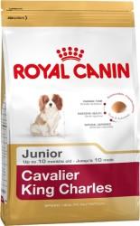 Royal Canin - Royal Canin King Charles Yavru Köpek Maması 1,5 KG