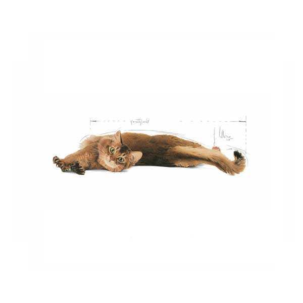 Royal Canin Light Kedi Maması 2 KG