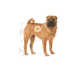 Royal Canin Medium Dermacomfort Deri ve Tüy Problemli Köpekler İçin Mama 10 KG - Thumbnail