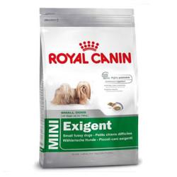 Royal Canin - Royal Canin Mini Exigent Köpek Maması 2 KG