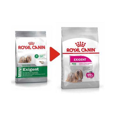Royal Canin Mini Exigent Köpek Maması 3 KG