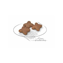 Royal Canin Mini Irk Yaşlı Köpek Maması 2 KG - Thumbnail