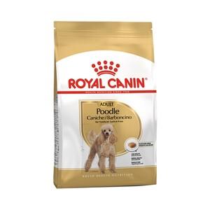 Royal Canin Poodle Köpek Maması 3 KG - Thumbnail