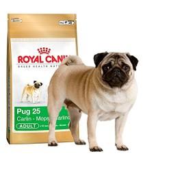 Royal Canin Pug Köpek Maması 1.5 KG - Thumbnail